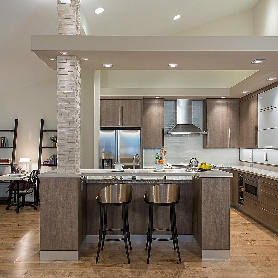 Modern Condominium Remodel