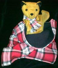 Benbow The Bear