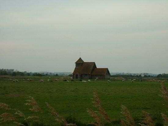Brick house and farm with a flock of sheeps in the green fields
