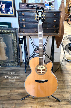 HS-25 D'Angelico Excel