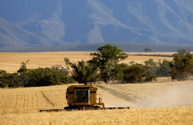 Seeking Help with your farm budget and gross margins