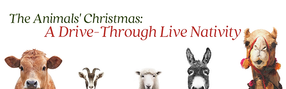 Banner for Drive-Through Nativity Signup