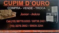13516225_105904053176535_479123481192079