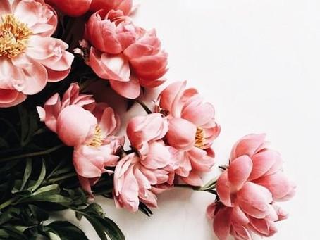 Квіти для Лесі