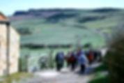 loftus alum walk.jpg
