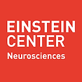 Einstein_center.png