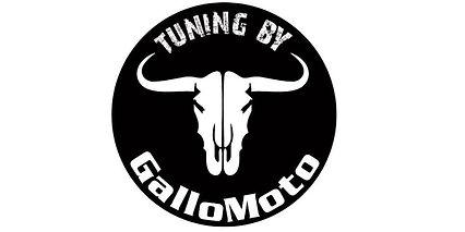 Gallo Moto.jpg