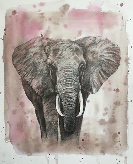 E is for Sumatran Elephant