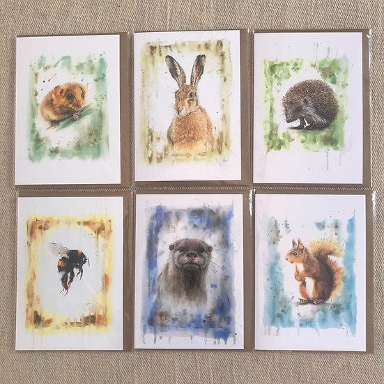 Set of British Endangered Species cards