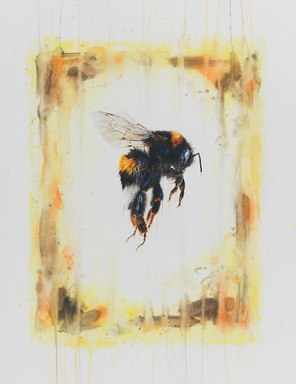 Plight of the Bumblebee