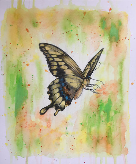 J is for Jamaican Giant Swallowtail Butterfly
