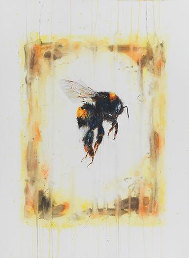 Flight of the Bumblebee - Penel Kirk.jpg