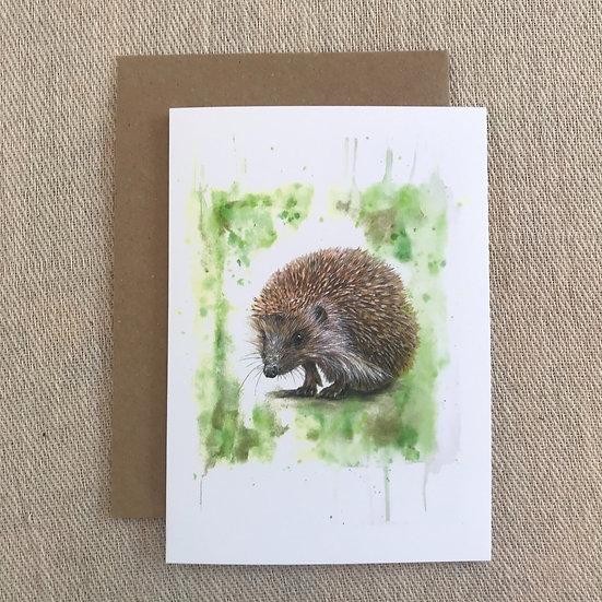 Hedgehog card