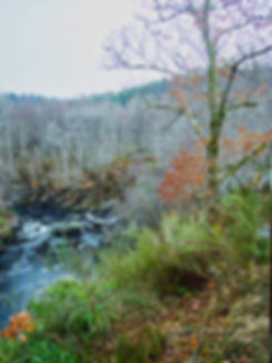 ROGIE FALLS SCOTLAND