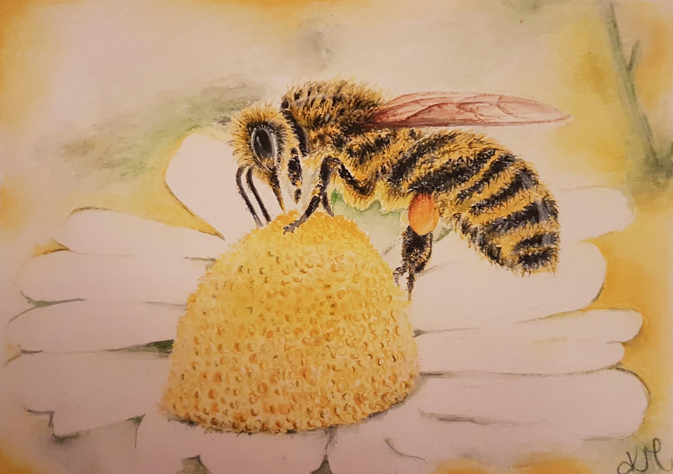Bee ALIVE!