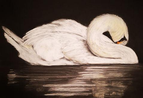 Swan 2 soft pastel print.jpg