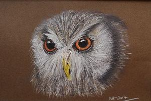 owl1a (2).jpg