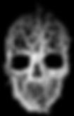 tree_skull_novyy_belyy_1495644480_previe
