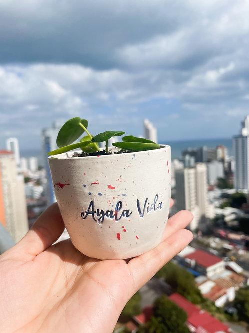 Ayala Vida mini pot