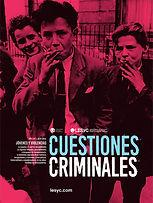 Cuestiones Criminales_tapa.jpg