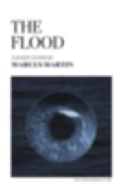 The_Flood_Cover_2.0 20171109 vtrimmed vS