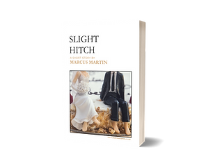 Slight Hitch - 3D cover.png