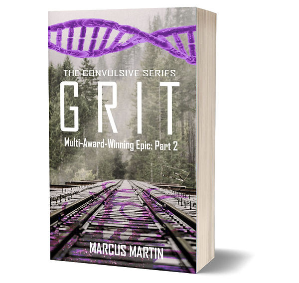 2 Grit 3D cover - cropped.jpg