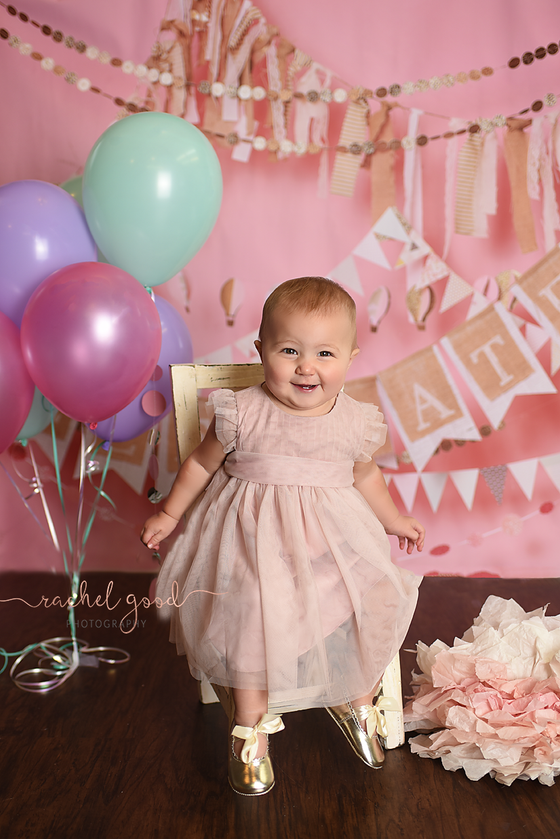 Sawyer's First Year | Medina Baby Photographer