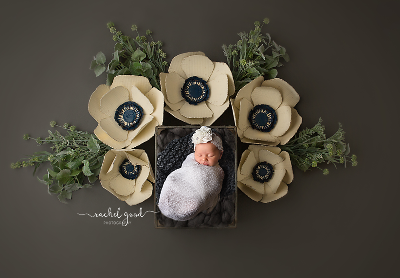 floral newborn photos