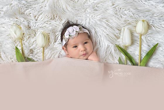 {meet Evelyn Rose} 3 weeks new | Chagrin Falls, OH Newborn Photographer