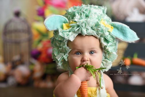 northeast ohio newborn photographer