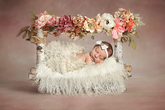 Meeting Lily. 1 month new, welcome home newborn session in Parma