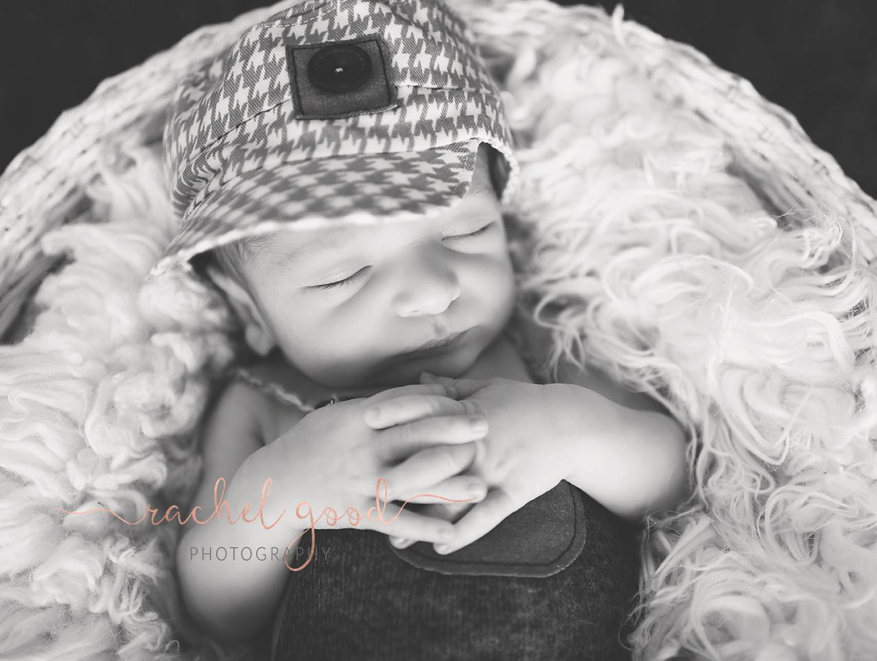 berea newborn