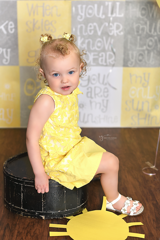 """You are my sunshine"" Quinn turns 2! Avon, OH Photographer"