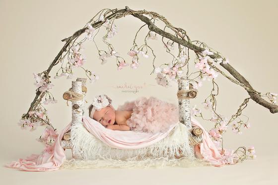Meet Emma. 8 days new. Strongsville Newborn Photographer