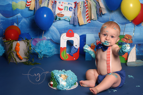 Collin's Celebrating One Session | Avon Lake, OH First Birthday Photographer