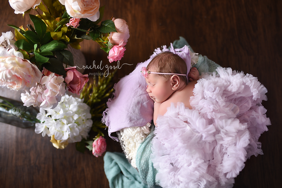 Meet Mary Kate. short and sweet newborn session.