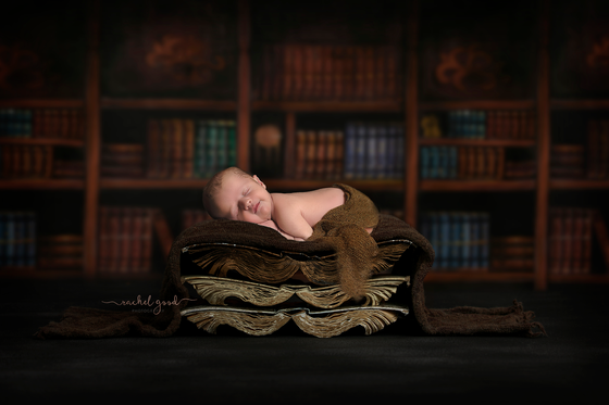 Evan. First Year of Life Client. Westlake, OH Newborn Photography