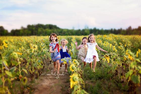 Sunflower minis. Round 2 sneak peeks: Maria's field of hope.