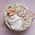 short&sweet newborn $450