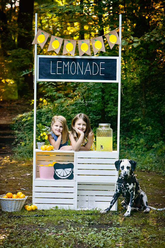 Lemonade stand milestone session