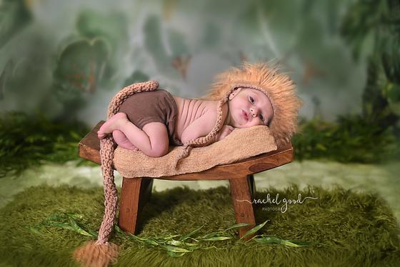 Leonardo - 8 days new; short n sweet newborn session.