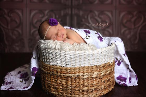 Harper. Cleveland Newborn Photographer