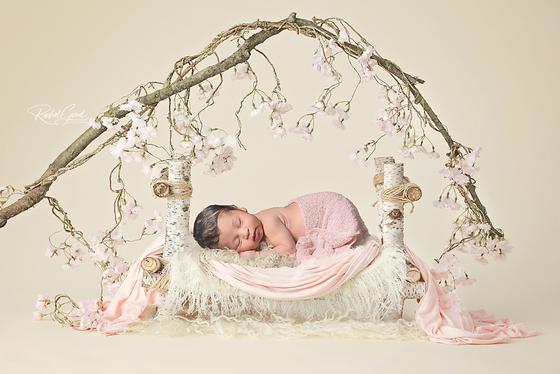 Introducing Julia. Short & Sweet newborn session.