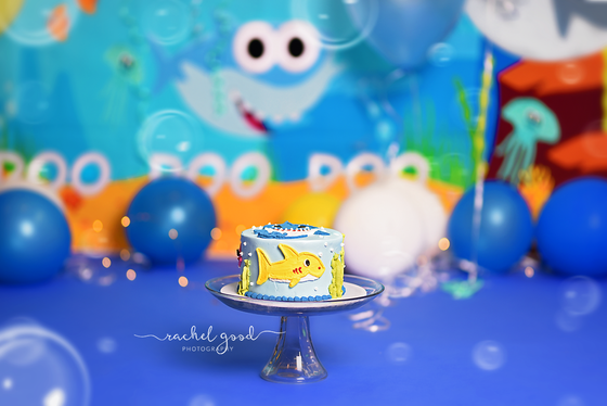 Baby Shark cake smash session with CJ 'doo doo doo'