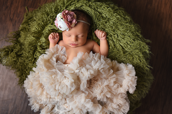 Milena, 6 days new. Strongsville Newborn Photographer