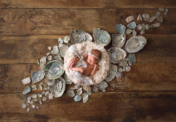 First Year of Life Client, Perrie with North Ridgeville newborn photographer, Rachel Good.