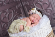 westlake newborn photographer