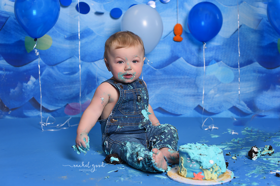 Zayden's fish themed cake smash session