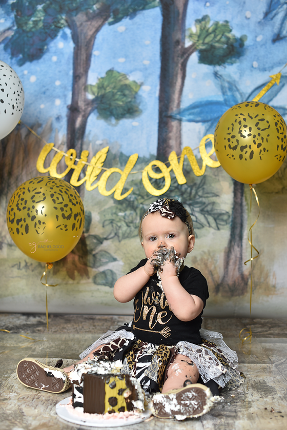 wild one themed cake smash session